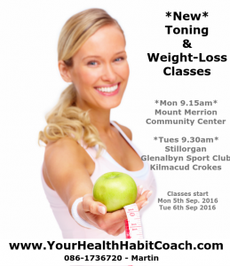 Mount Merrion Toning Fitness Weight Loss Conditioning Stillorganin South Dublin with Martin Luschin