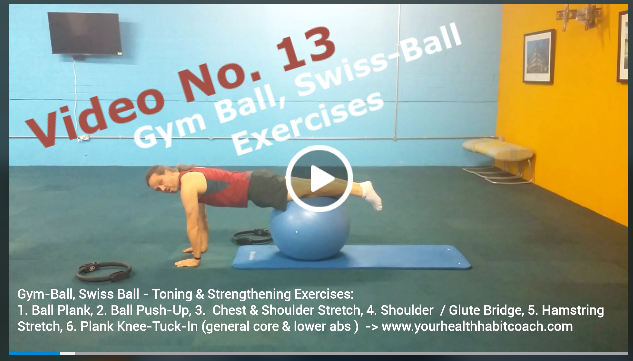 Gym Exercise Swiss Ball Sample Exercises Core Upper Body Strength in South Dublin with Martin Luschin Sandford Industrial Estate Leopardstown Central Park