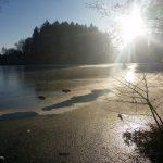 winter impression Black Forrest Bad Duerrheim Baden Wuerrtemberg December 2016 January 2017
